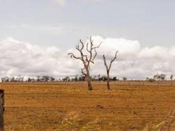 $1M DROUGHT FUND TO BOOST MID MURRAY COMMUNITY FACILITIES, ECONOMIC GROWTH